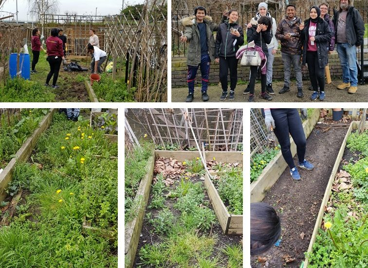Community Heroes Go Green Transforming Local Community Allotment